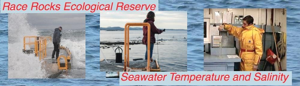 seawatericon