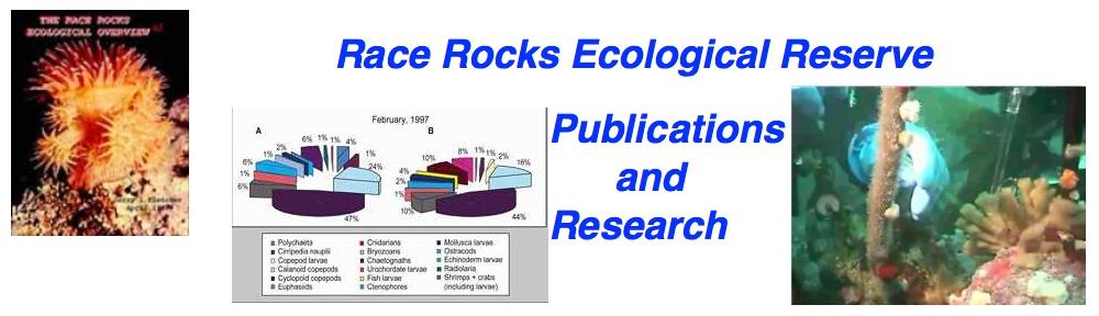 publicationsicon