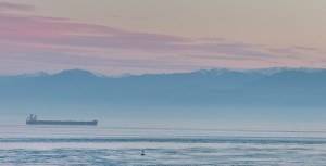Norwegian cargo ship 'Goya'. Bound for Balboa, running at 14 kts. AIS shiptracker is great.