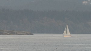 The Pearson College sailboat Amatoana seen in the distance returning to Pedder Bay from a project week trip.