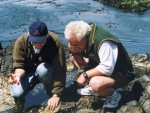 Garry and Paul examining a tidepool