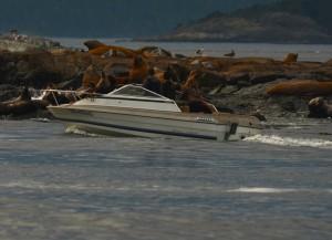 speedboat Oct 19 ER