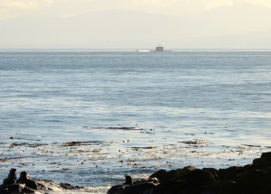 A submarine motors to the south of Race Rocks. Nov. 7, 2014. Photo by Nick Townley