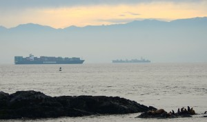 Two cargo ships pass near each other several kilometres southeast of Race Rocks. The Singaporean ship Evergreen Unific, 285m long, is using the outbound lane on its way to Tokyo. The Panamanian ship MSC Nerissa, 294 m, is using the inbound lane towards Vancouver. November 19, 2014. Photo by Nick Townley