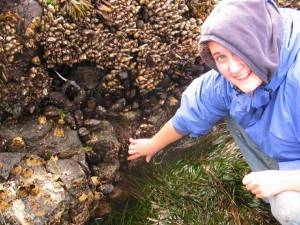 Student pointing to thatched barnacles . Note goose- neck barnacles on the rock above.