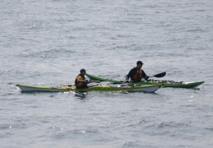 The two kayaks regroup after getting by the sea lions on South Islands.