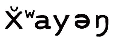 xwayenm