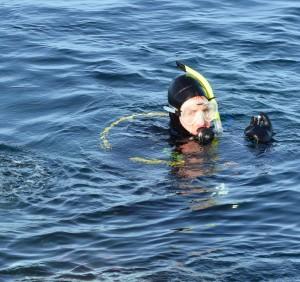 Diver up.