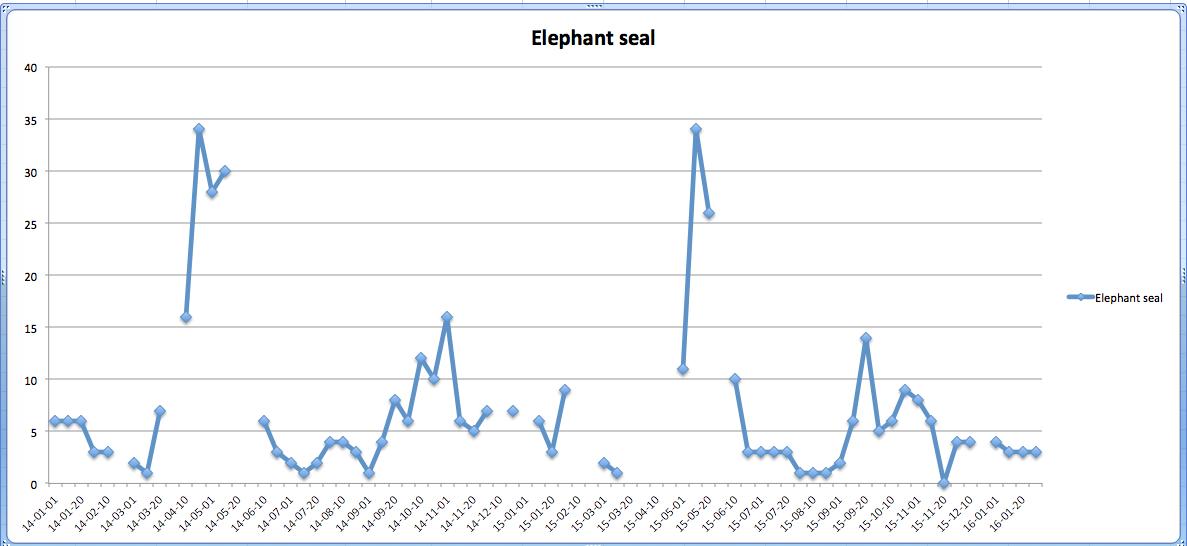 elephantseal2014-2015