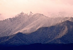 These two peaks in the Olympic Mountains, just east of the Elwha look a bit like Olympic Lions.
