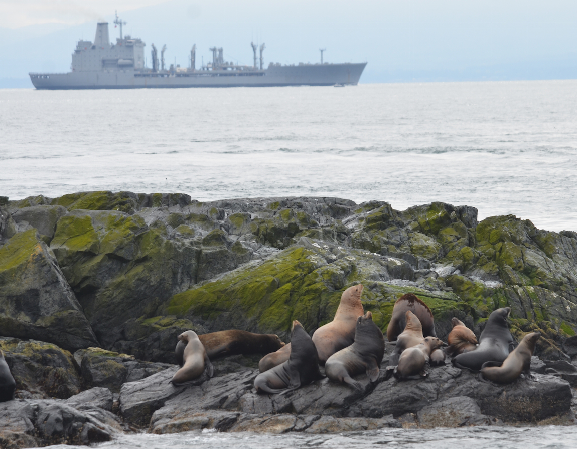 The Chilean oiler (resupply ship) leased by Canada passed Race Rocks in both directions today.