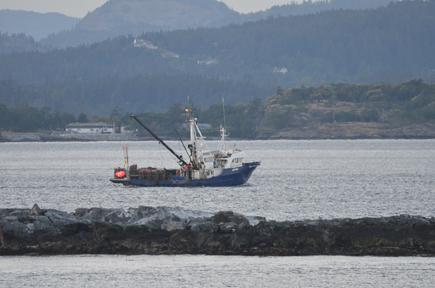 Fishing boat!