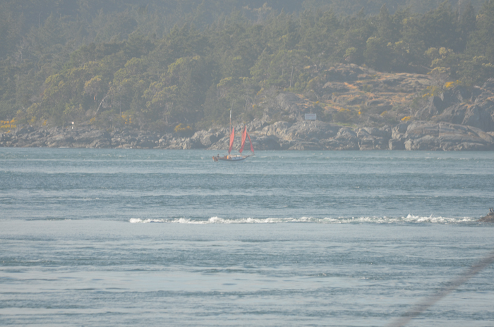 Red sails! 2