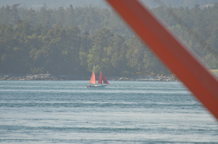 Red sails!