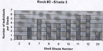rock3shade