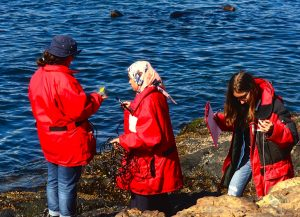 Students sort cord on conductivity meter and prepare to make abiotic measurements on their tide pool.