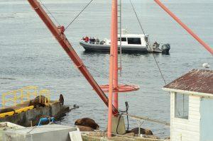 boat-1-26-9