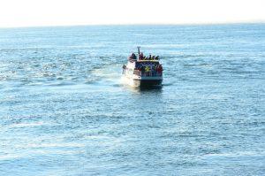 boat-27-9