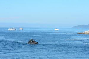 fleet-of-watchers-30-9
