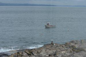 ogden-point-dive-boat-1-22-10