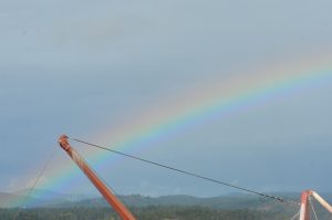 rainbow-16-10