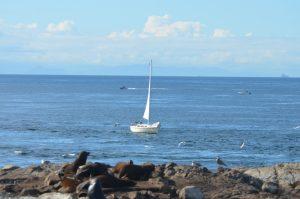 sailboats-etc-9-10