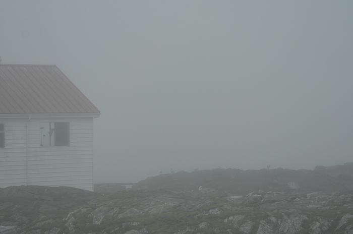 fog-2-9-11