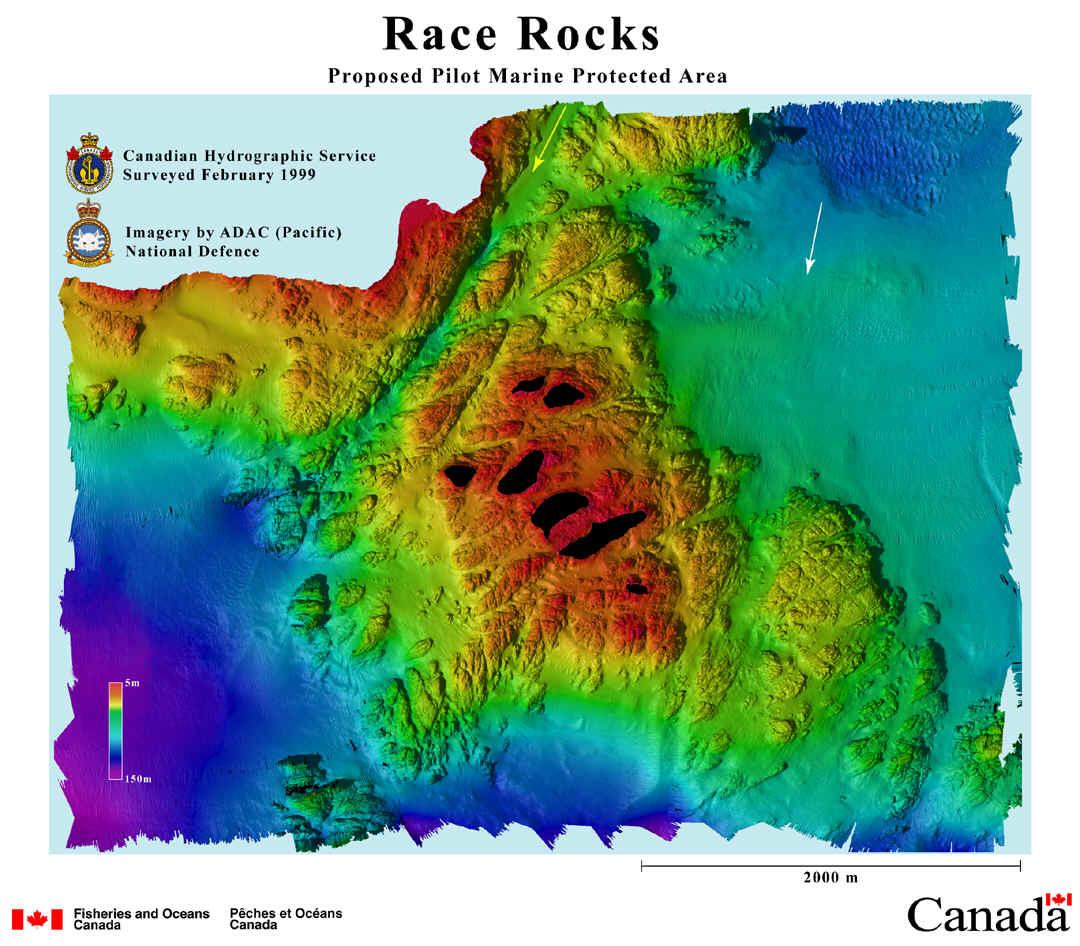 racerocksplan